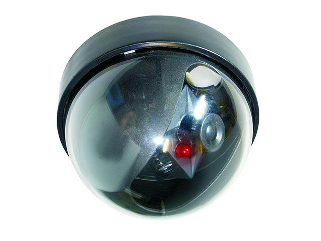 Byron CS44D Dummy Dome Camera with Flashing Light BYRCS44D
