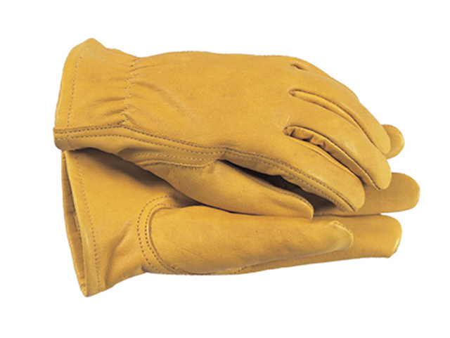 TGL105S Premium Leather Gloves Ladies' - Small